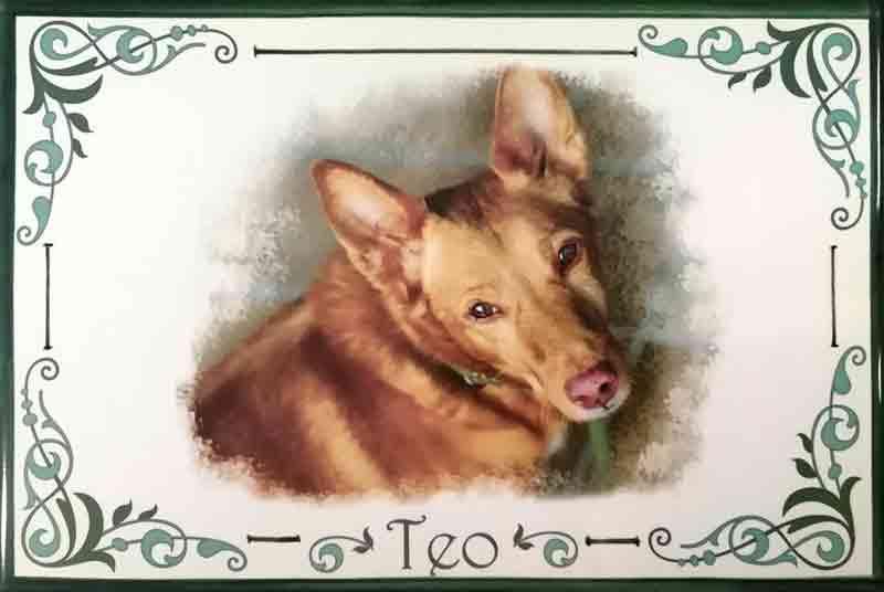 Azulejo con fotografía de perro